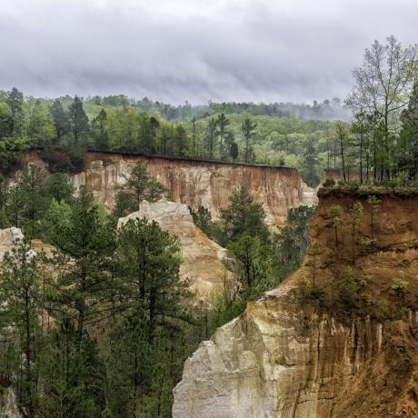 Sandstone cliffs at Providence Canyon State Park