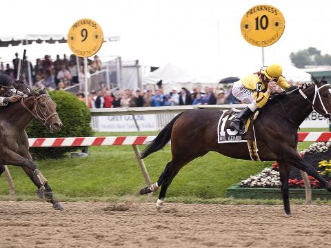 Preakness States, the third Saturday in May, is the middle jewel of thoroughbred racing's Triple Crown