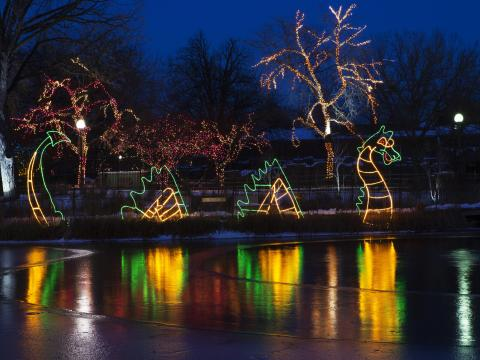 A light-up dragon on display at ZooLights at Lincoln Park Zoo